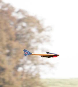Zangão voando